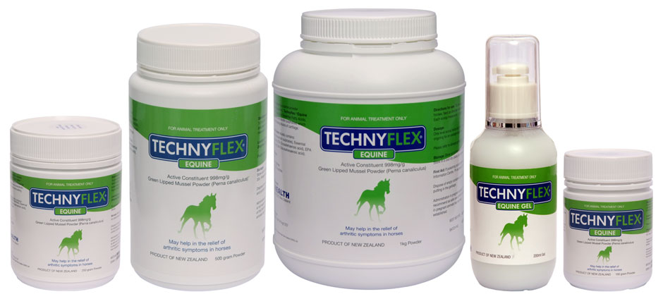 Joint Supplement – A Need for Your Horse