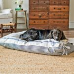 10 Tips to Keeping your Home Clean with Pets
