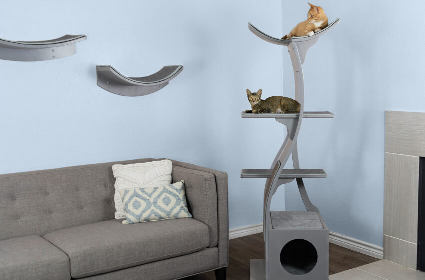 Modern Cat Furniture That Will Have Your Cat Purring